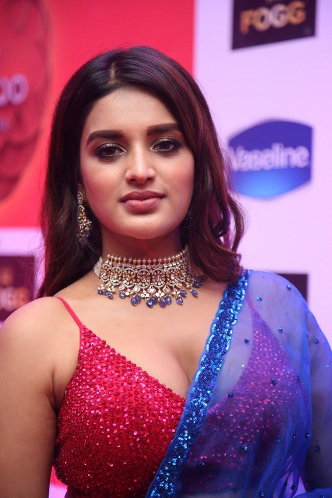 Nidhhi-Agerwal-13