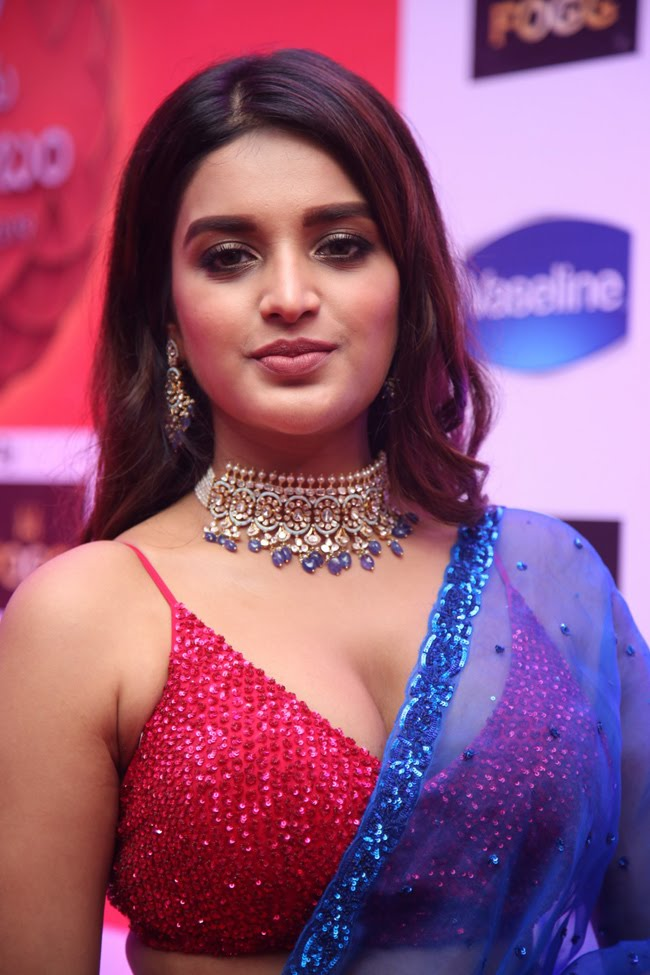 Nidhhi-Agerwal-14