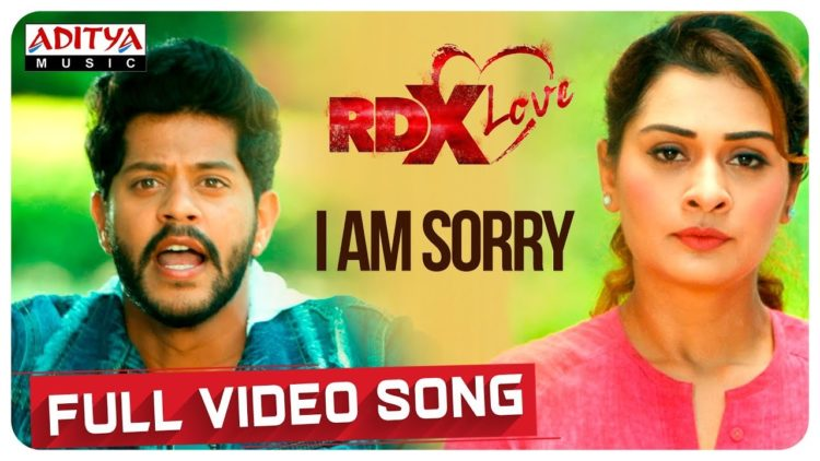 I Am Sorry Video | RDXLove Songs