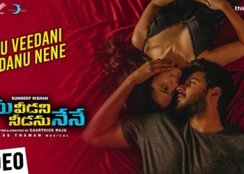 Ninu Veedani Needanu Nene | Ninu Veedani Needanu Nene Video Song