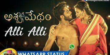Alli Alli Video Song   Ashwamedham Telugu Movie Songs