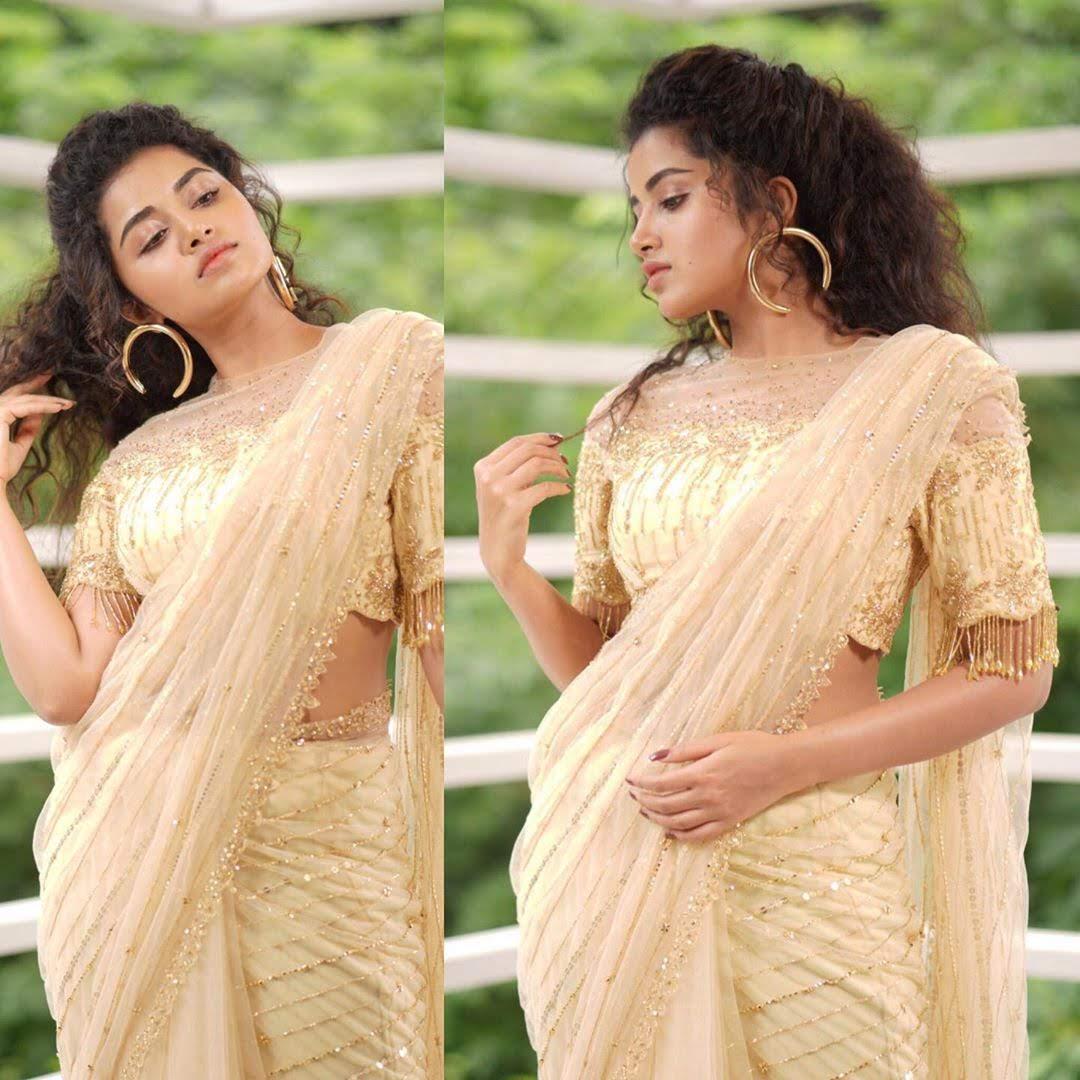 anupama_parameswaran_161