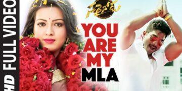 Sarrainodu Movie Songs | You Are My MLA Video Song