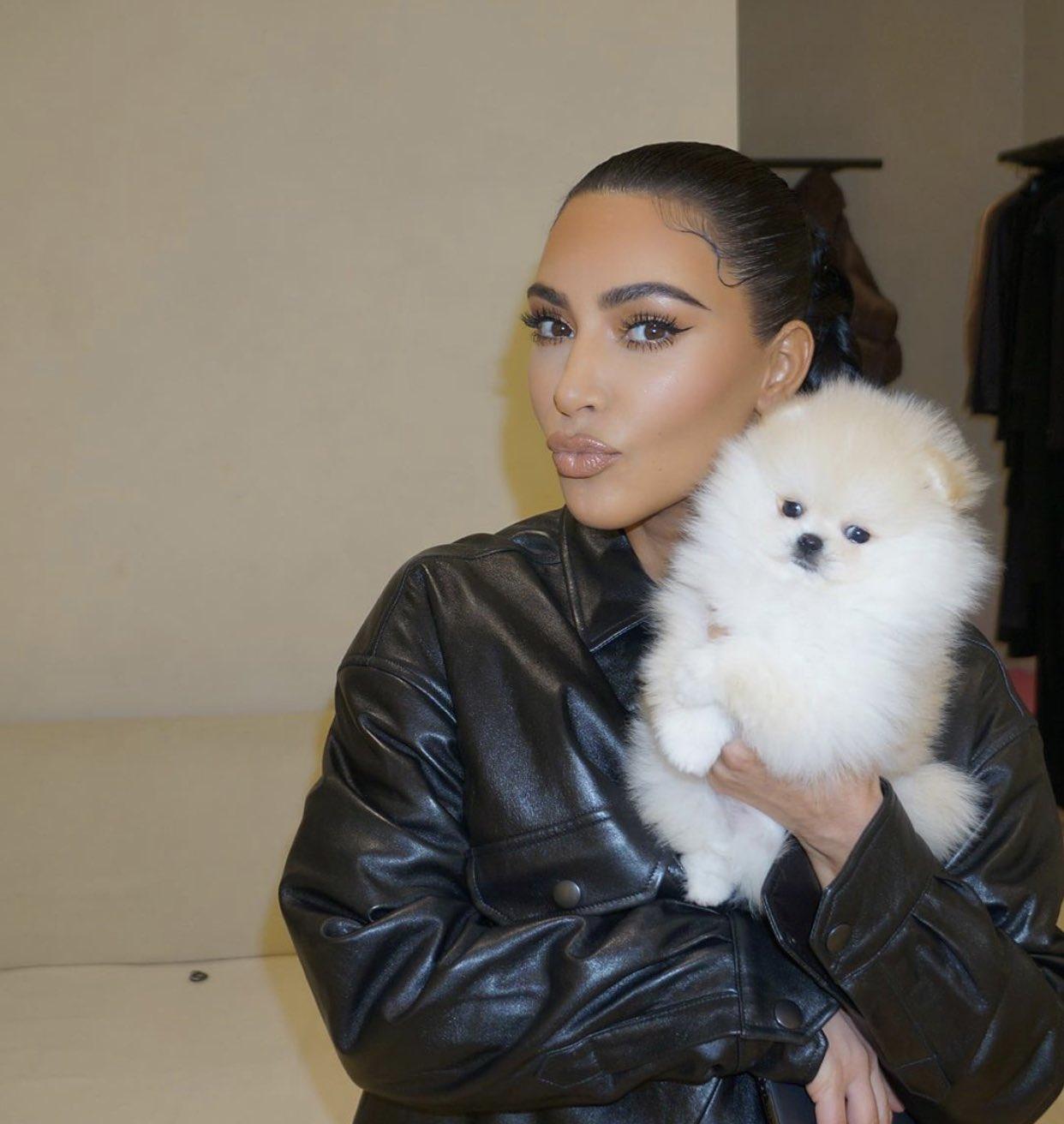 Kim Kardashian West with Puppy