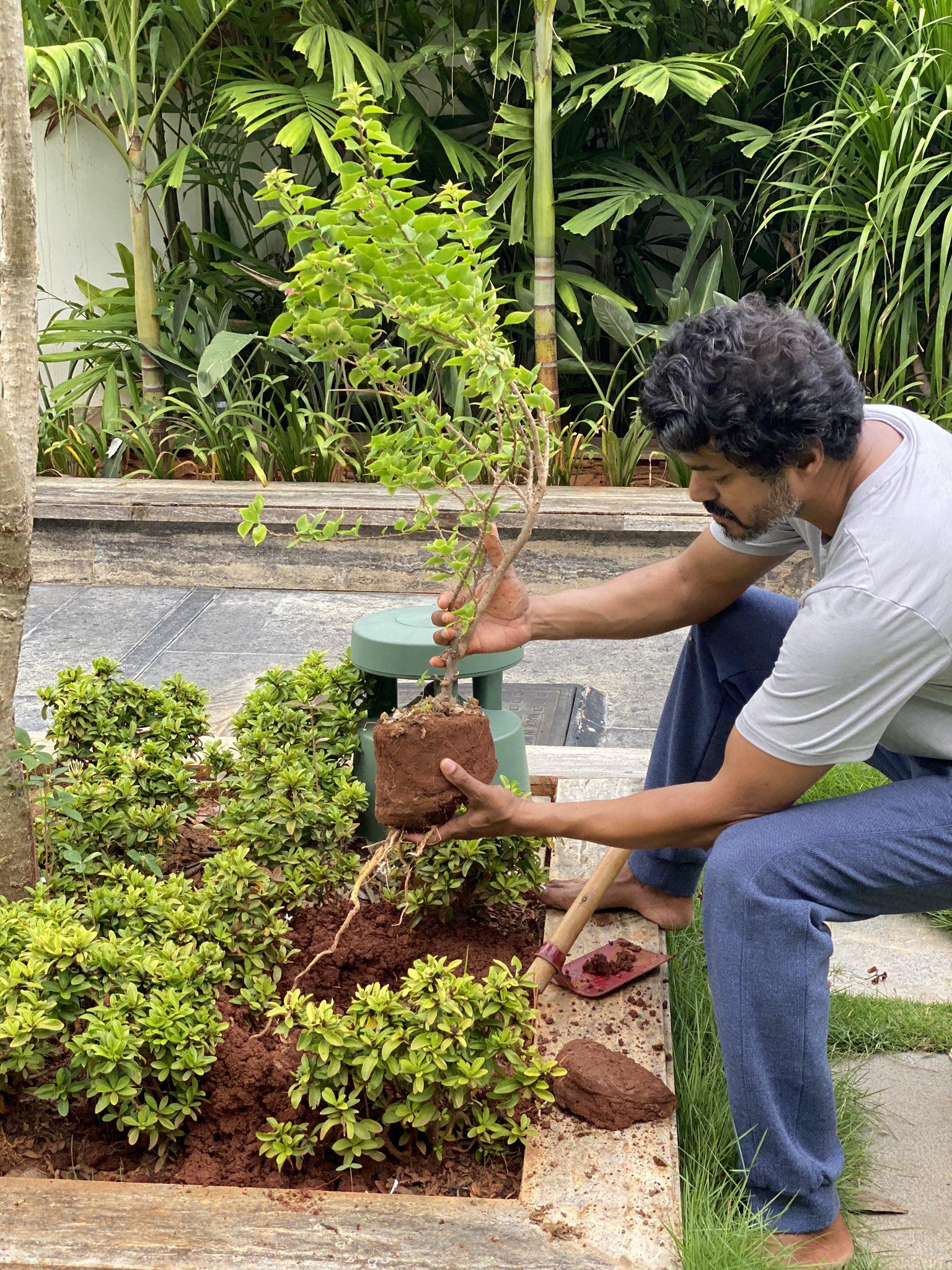 El comandante Vijay está plantando árboles jóvenes