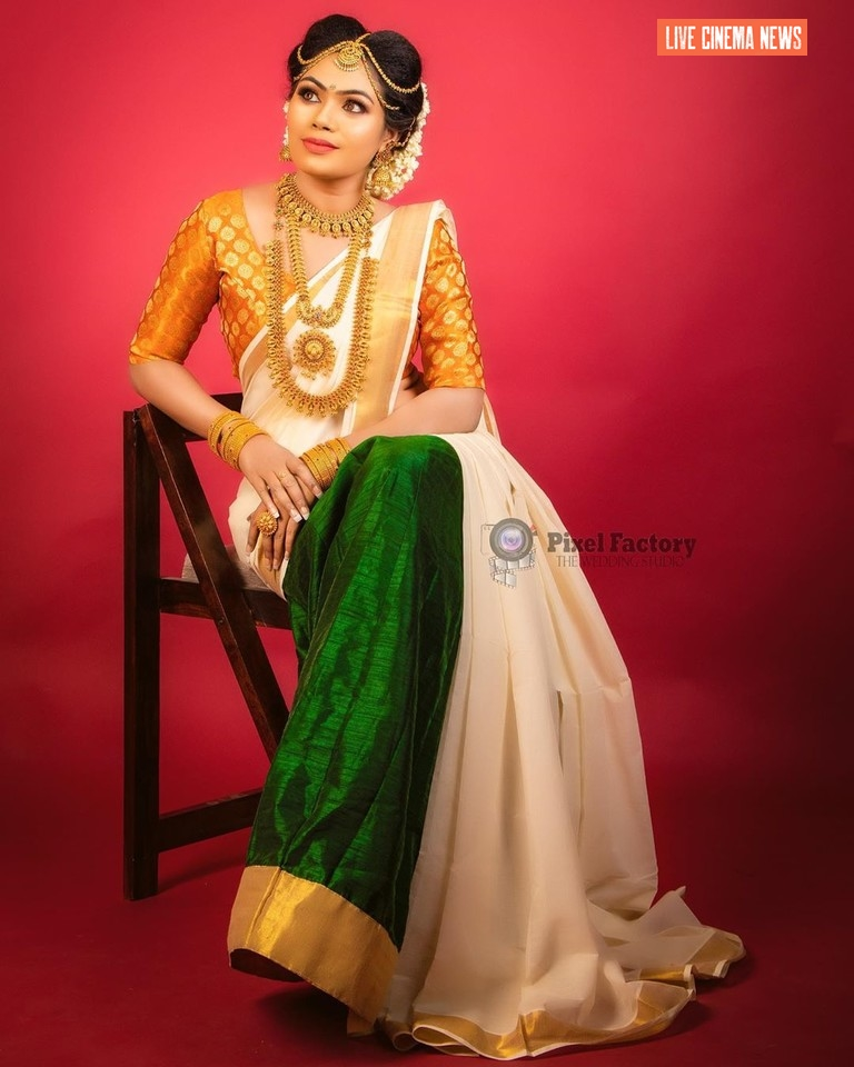 Divya Krishnan Latest Saree Photos
