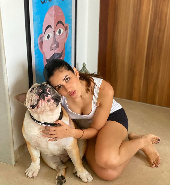 Actress Sonnalli Seygall Latest Photos