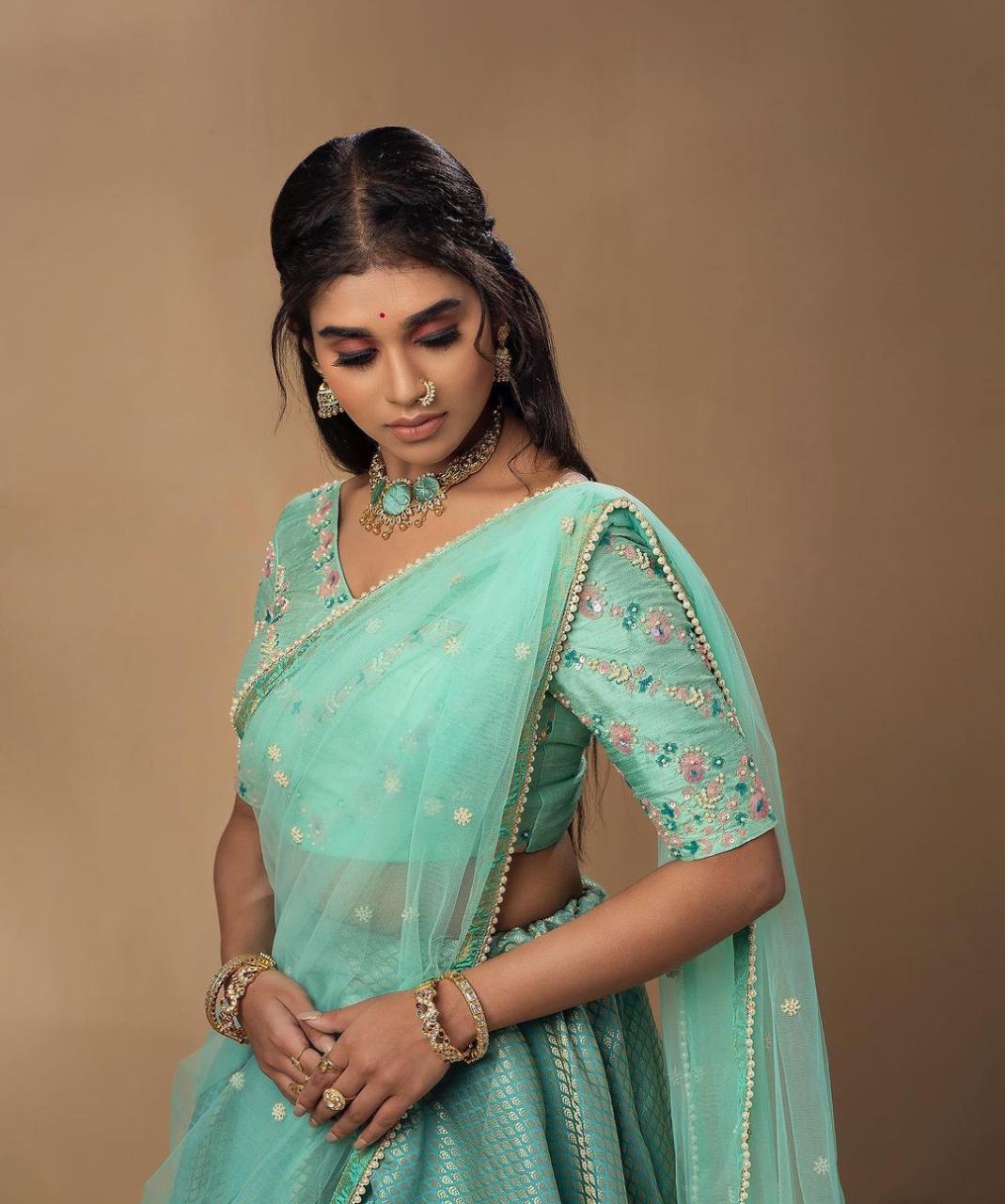 Actress Meenakshi Govindarajan Saree Photos (2)