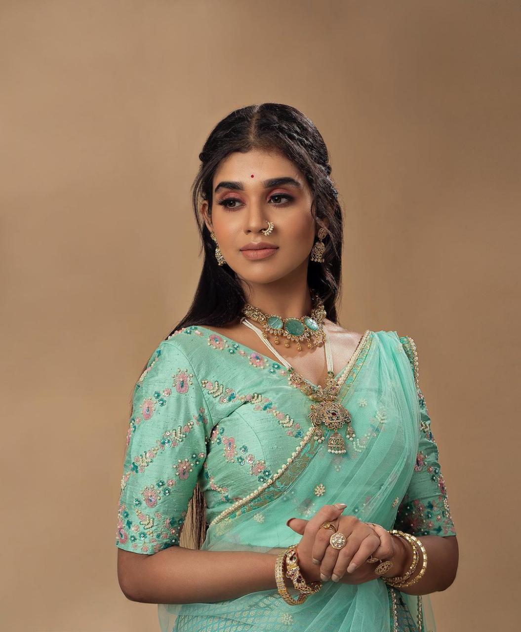Actress Meenakshi Govindarajan Saree Photos (3)