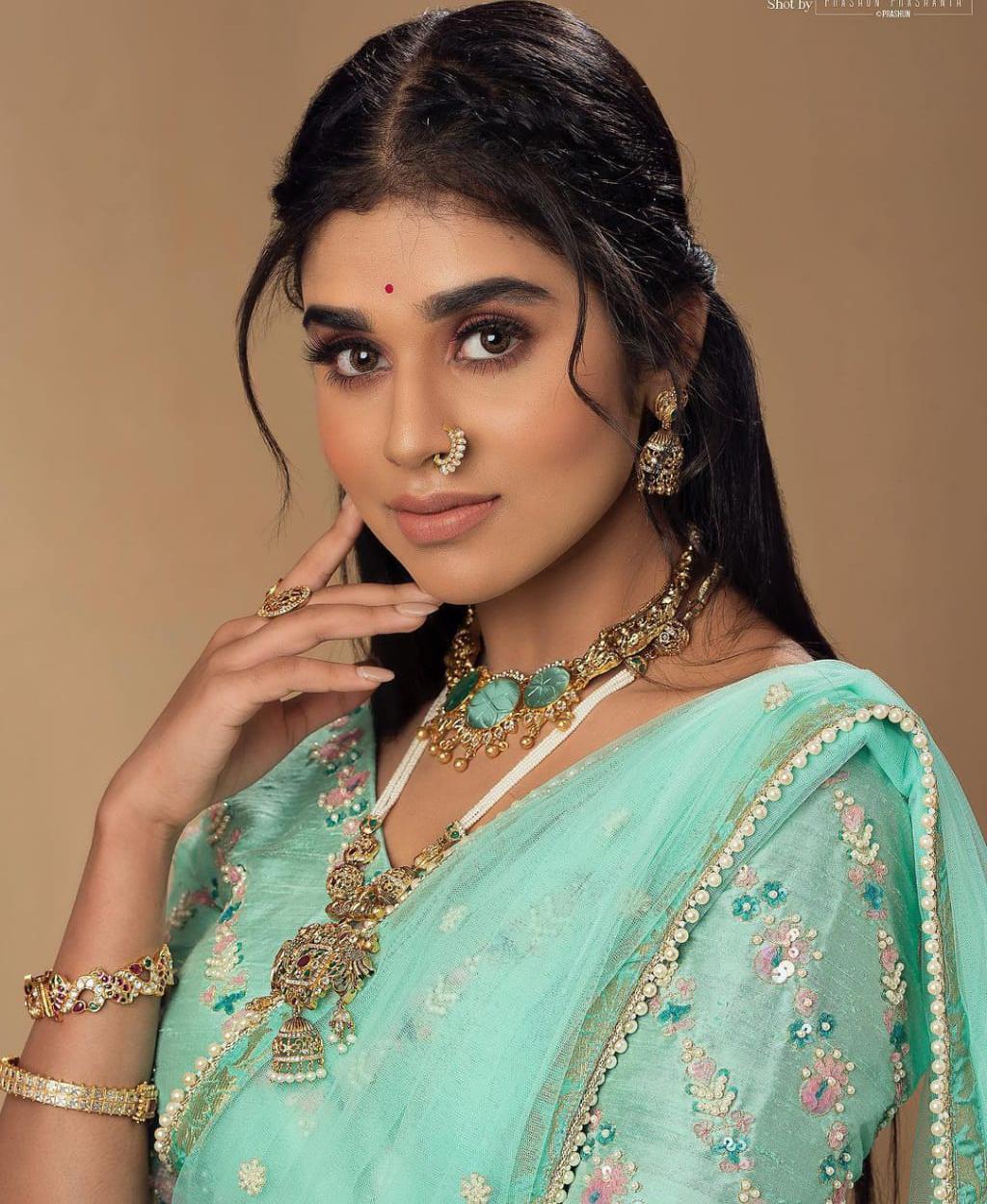 Actress Meenakshi Govindarajan Saree Photos (4)