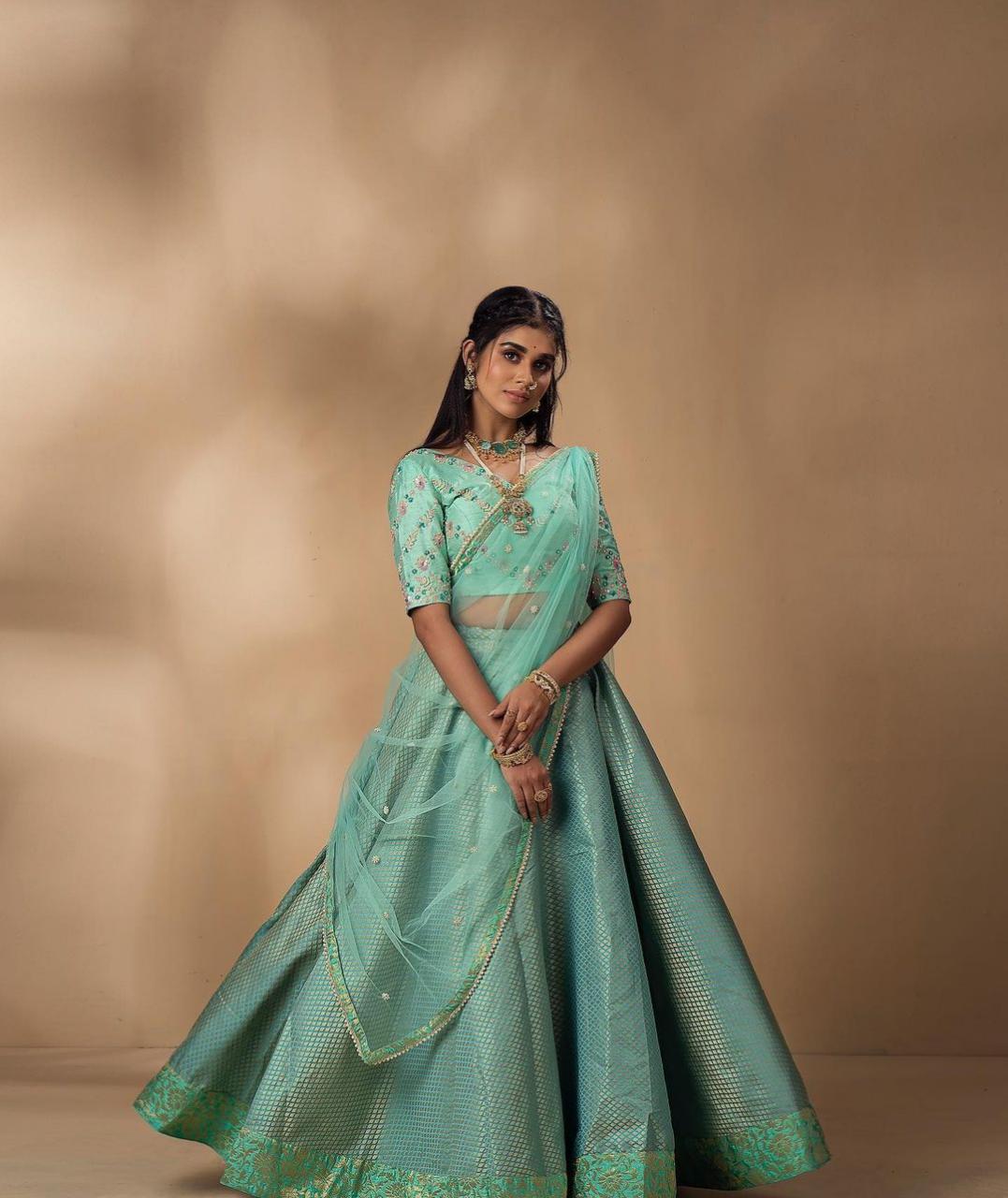 Actress Meenakshi Govindarajan Saree Photos (5)