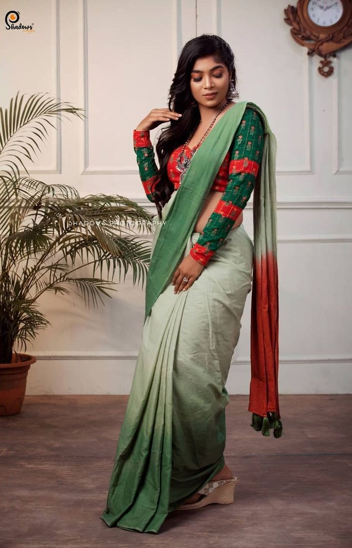 VJ Parvathy Latest Saree Photos (5)