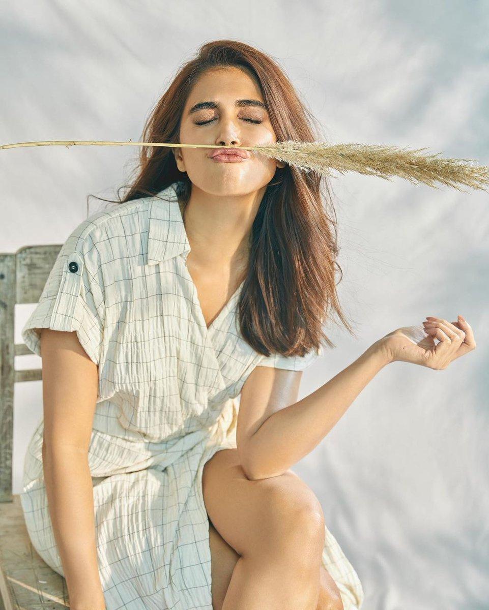 actress_pooja_hegde_new_stills_963258742